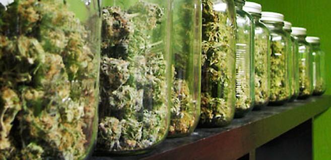 Top 3 Cannabis Jobs