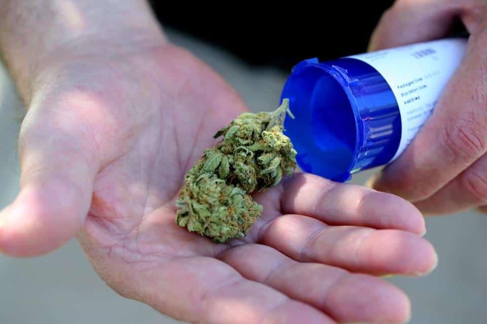 Cannabis career. Marijuana jobs