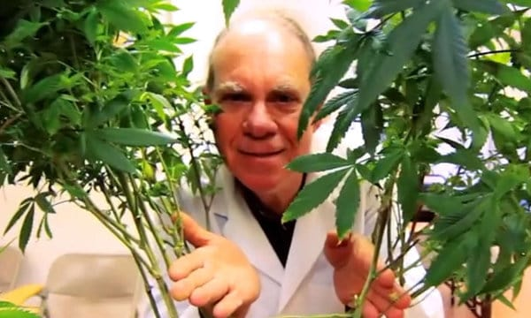 Ed Rosenthal. Cannabis Training University faculty.
