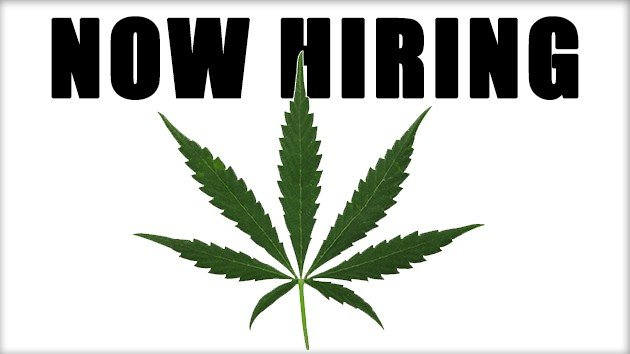 Marijuana jobs. Cannabis career. Weed jobs. 420 careers.