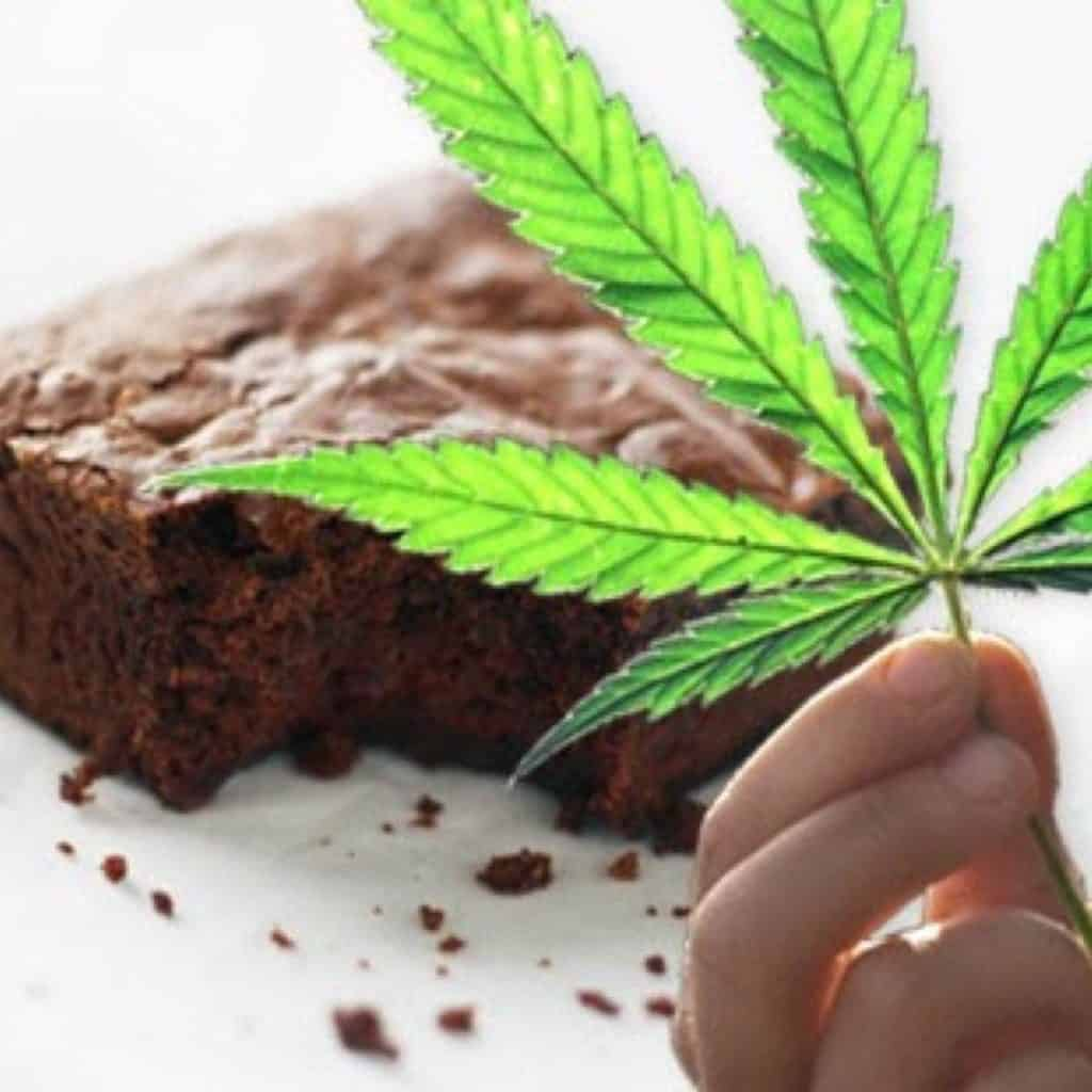 Cannabis edibles. Brownies and a pot leaf.
