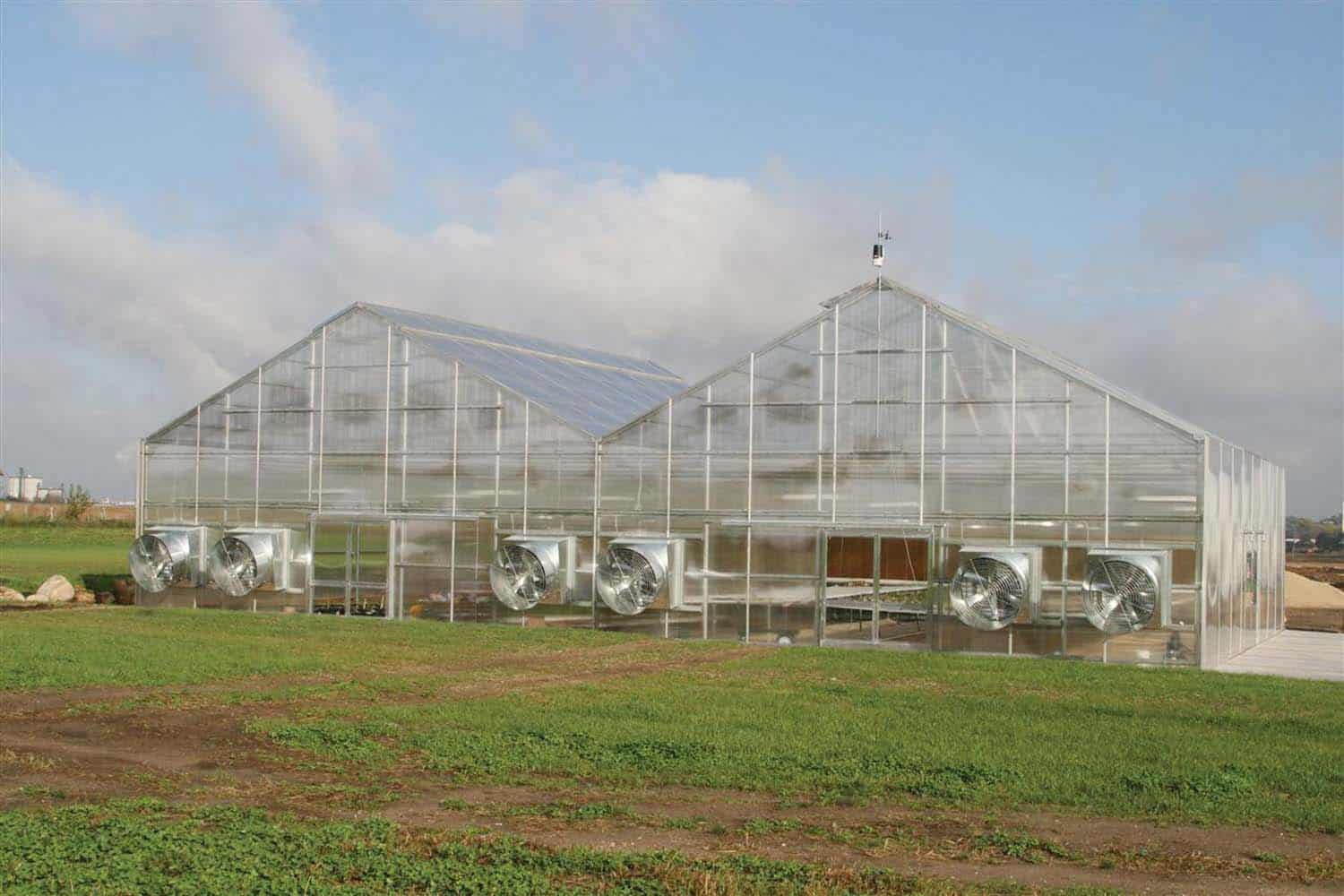Greenhouses for Cannabis Growing