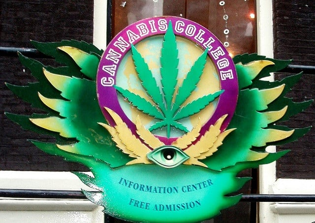 Enrolling In An Online Cannabis College in Vermont