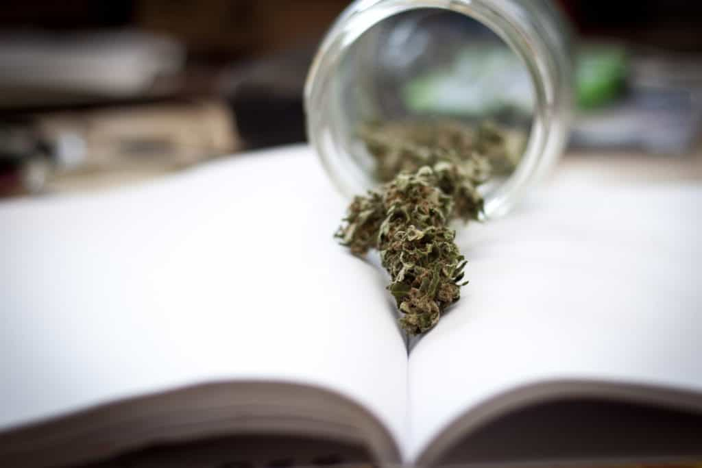 Cannabis buds on a book