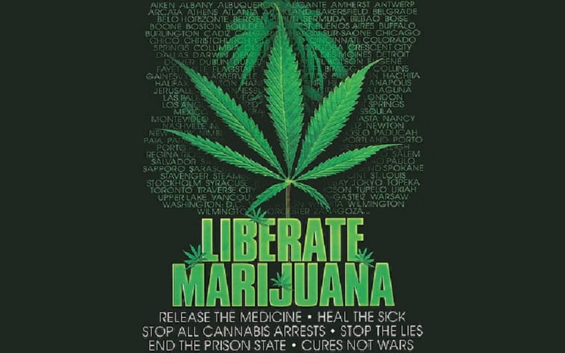 Marijuana Facts That Are Interesting