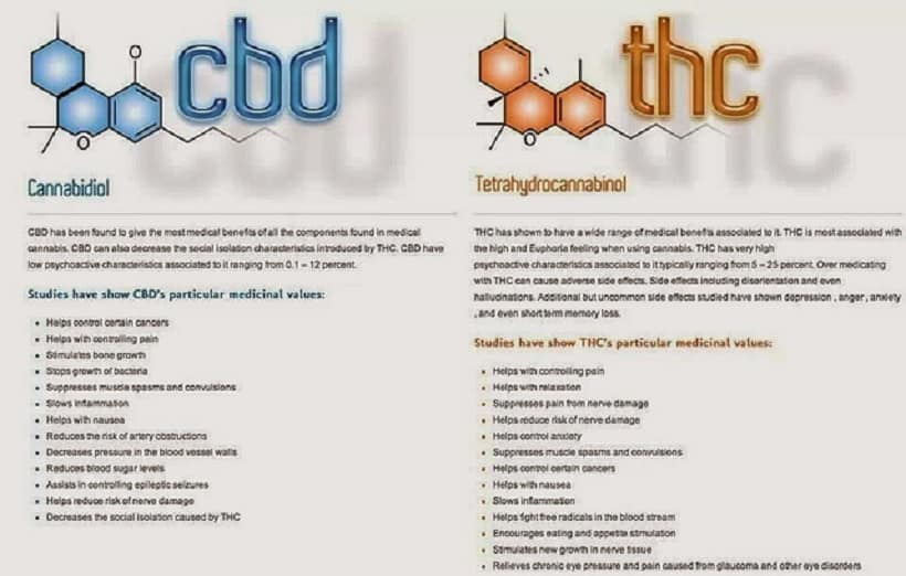 Why More Psychoactive Properties for THC than CBD?. Charts of CBD and THC.