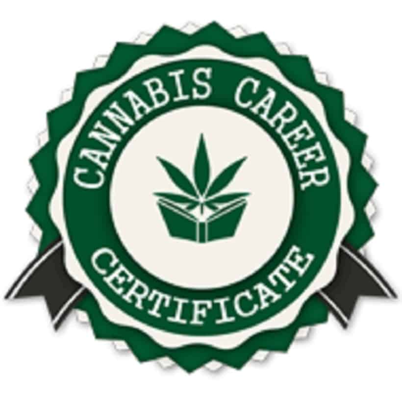 How to Obtain Cannabis Training Online