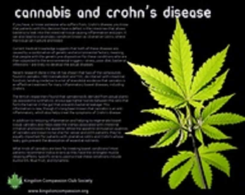Medical Marijuana and Crohn's Disease