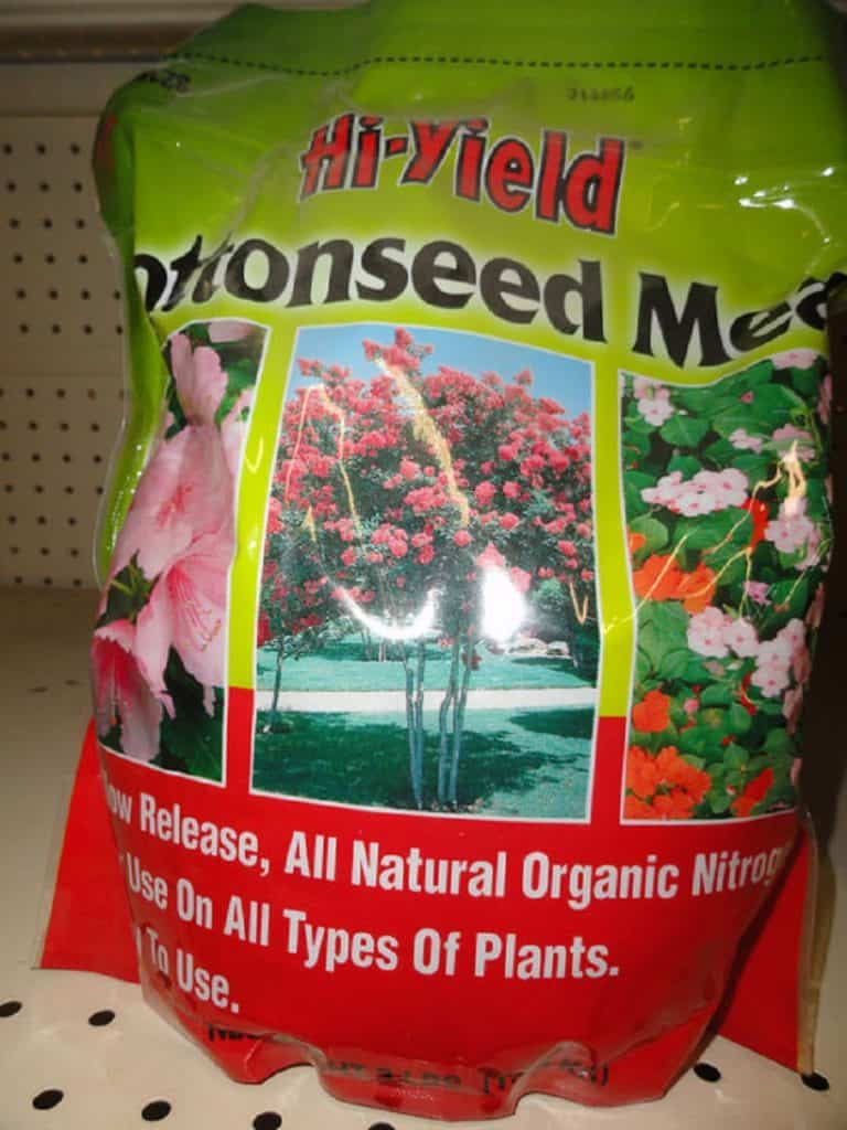 Nutrient Deficiency Solution For Marijuana Plant