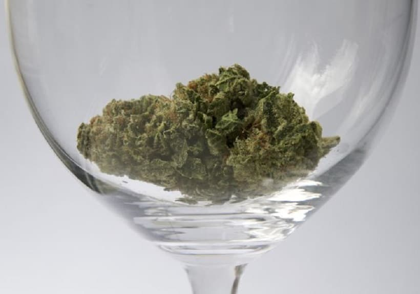 How to Make Marijuana Infused Wine. Bud in a wine glass.
