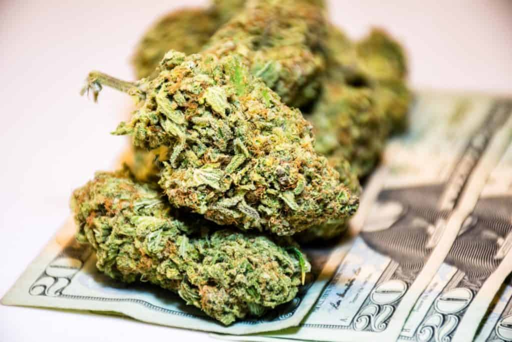 5 Ways To Make This 4 20 Holiday Your Biggest Day Of The Year. Money with marijuana buds on it.