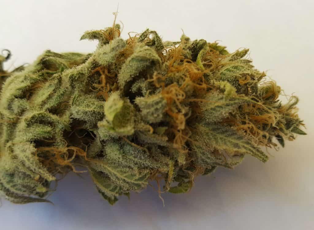 cannabis strain LA Confidential