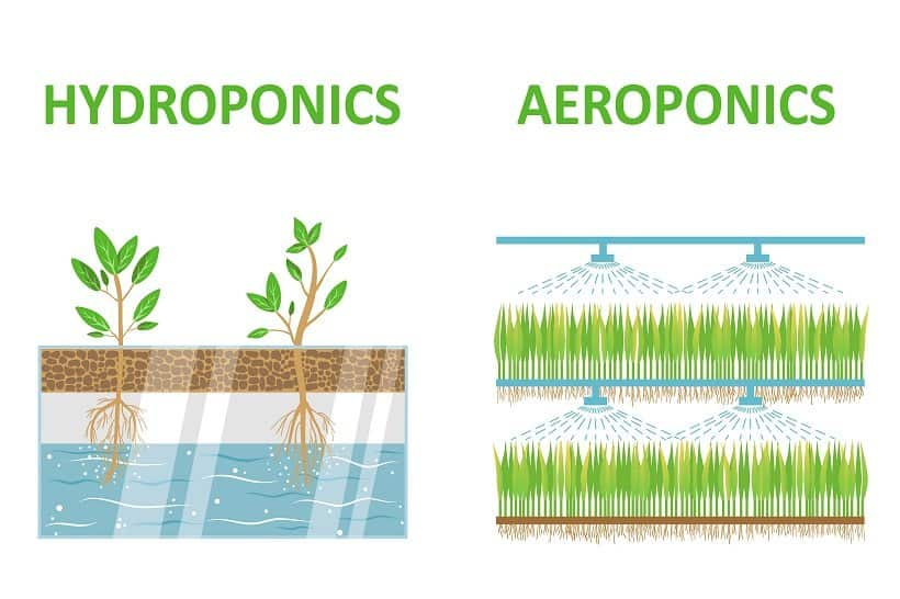How to Make Your Home Aeroponic System