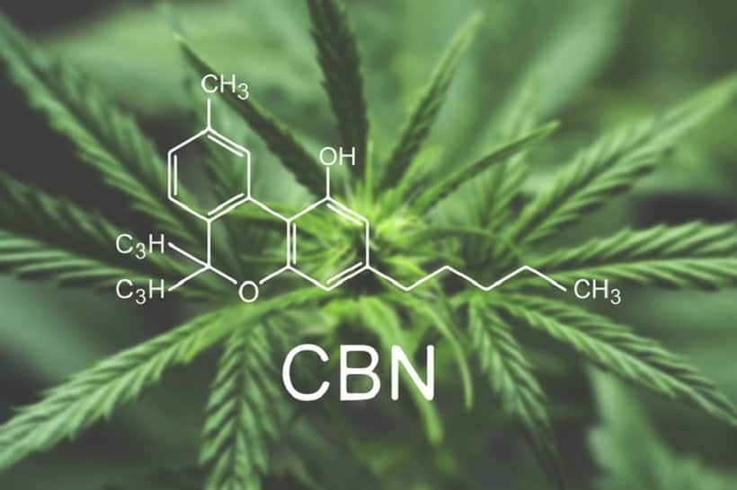 CBN and CBD Comparisons