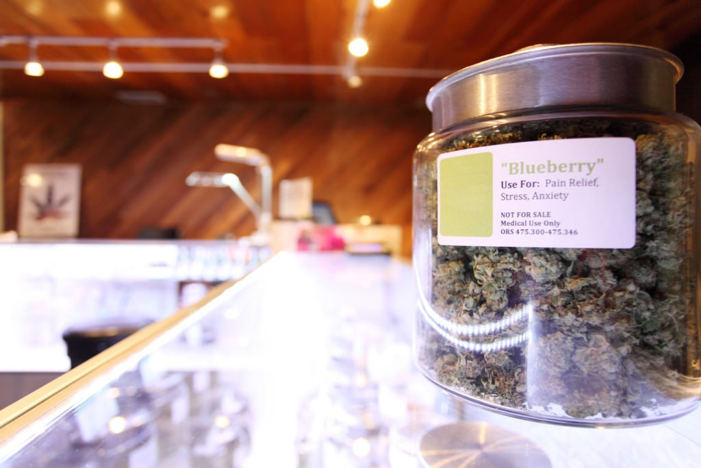 Becoming A Cannabis Budtender: What Employers & Customers Expect