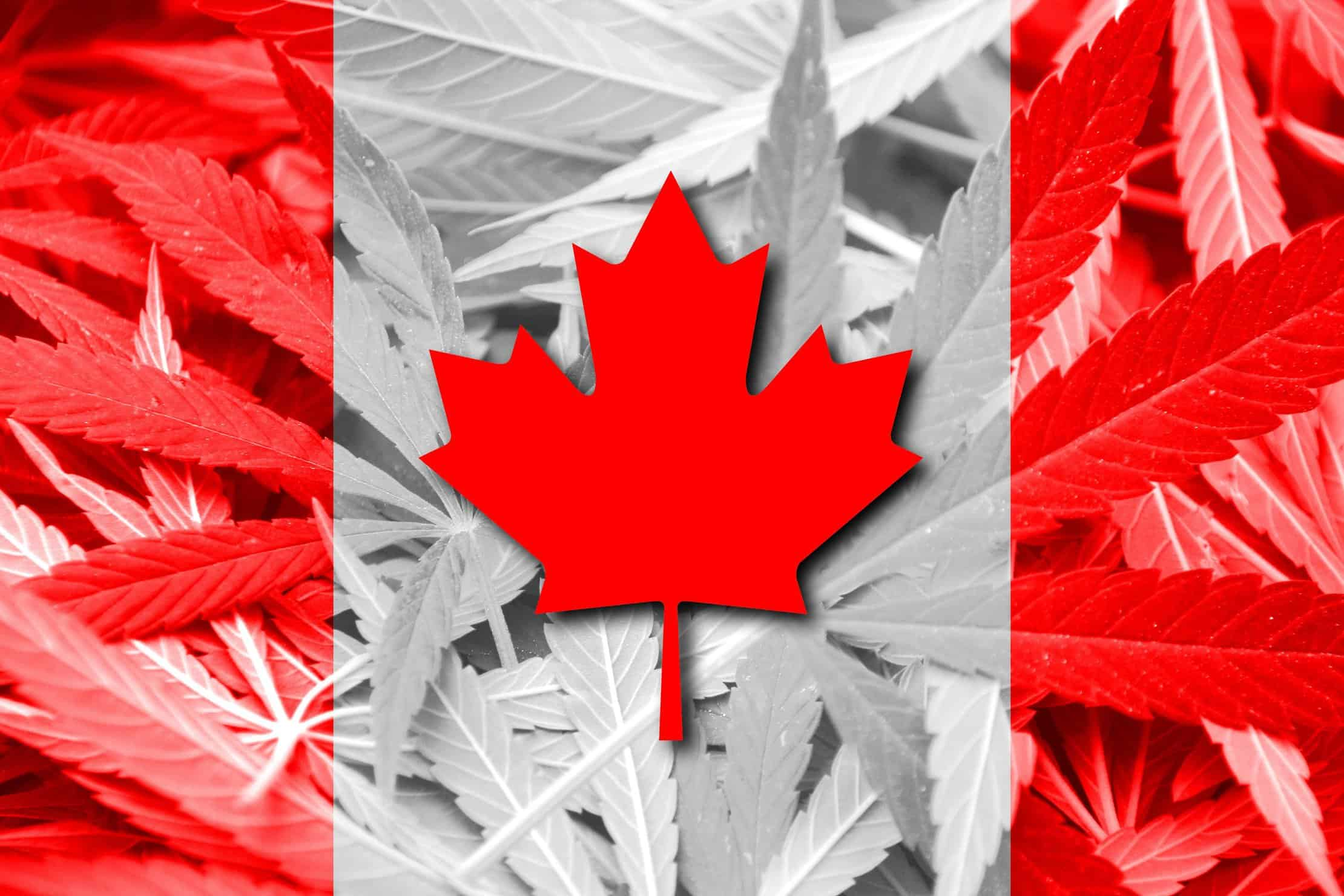 Here's What To Expect From Legalized Marijuana in Canada. Canadian flag.