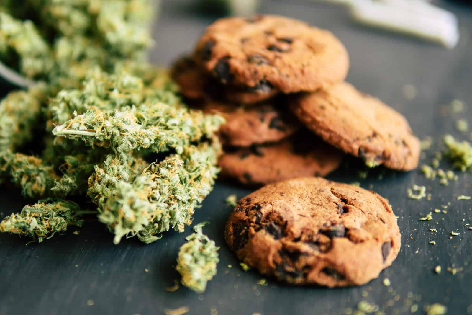 How Chefs Take Marijuana Edibles To The Next Leve. Cookies and marijuana buds.