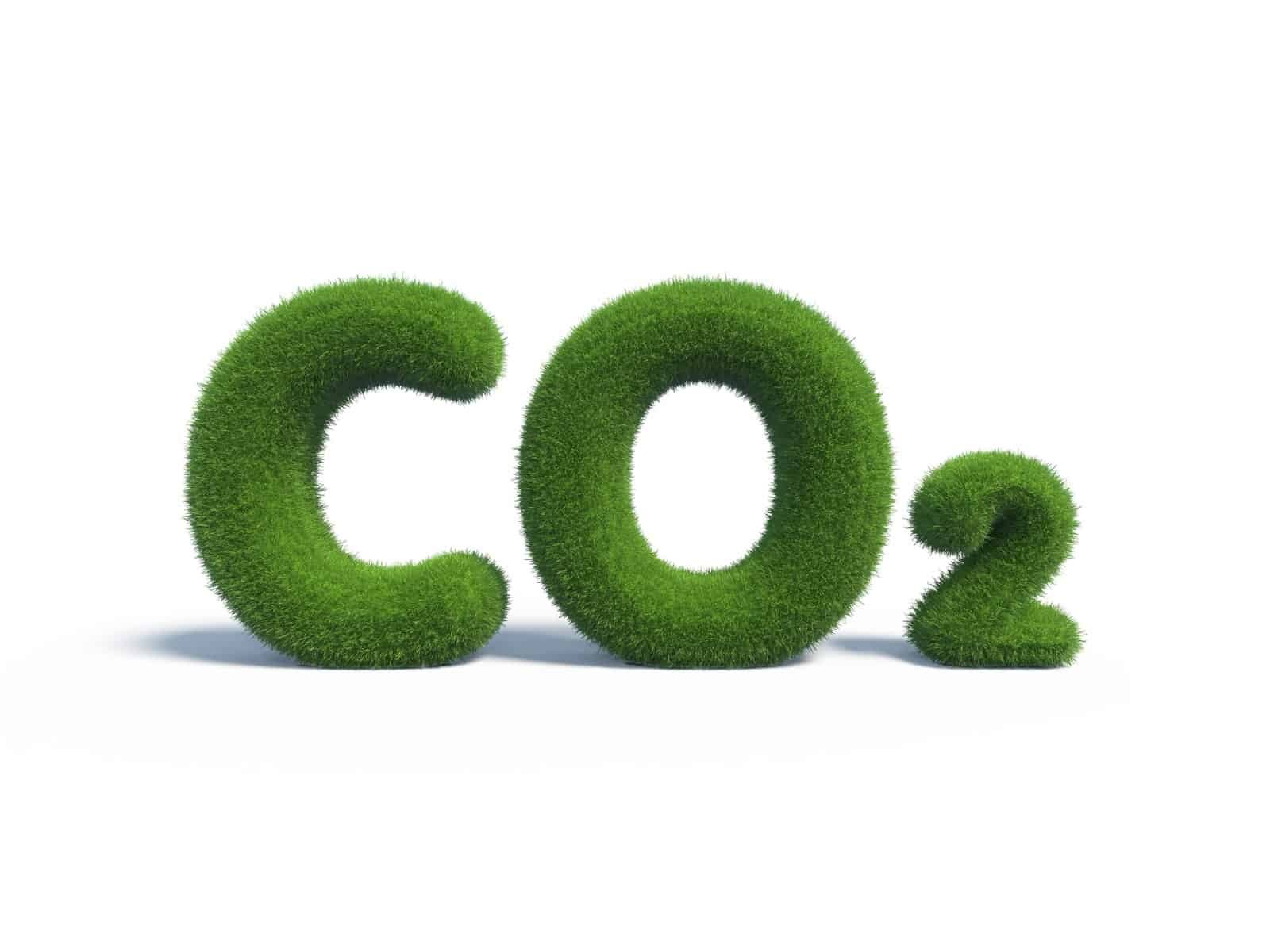 How CO2 Affects Your Marijuana Garden. CO2 sign.
