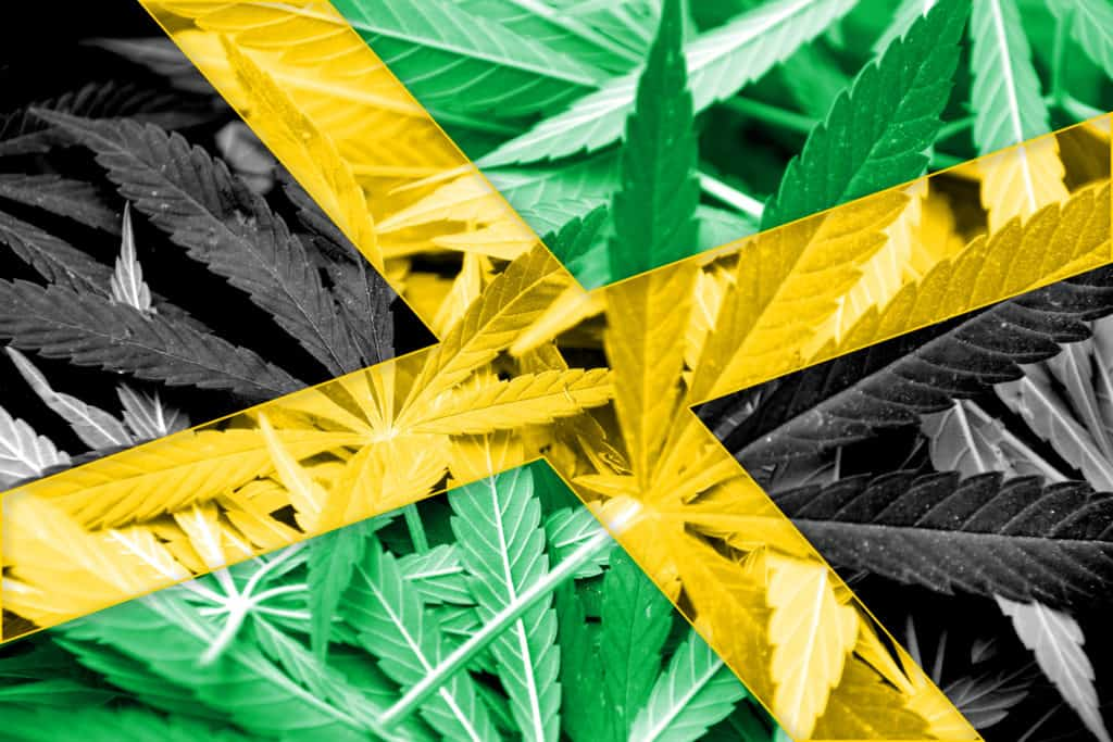 A Look at Cannabis Culture in Jamaica