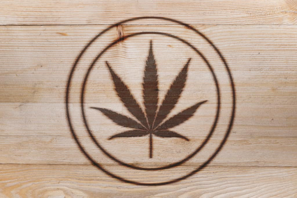 Build Your Cannabis Brand: An Interview with Budd Branding