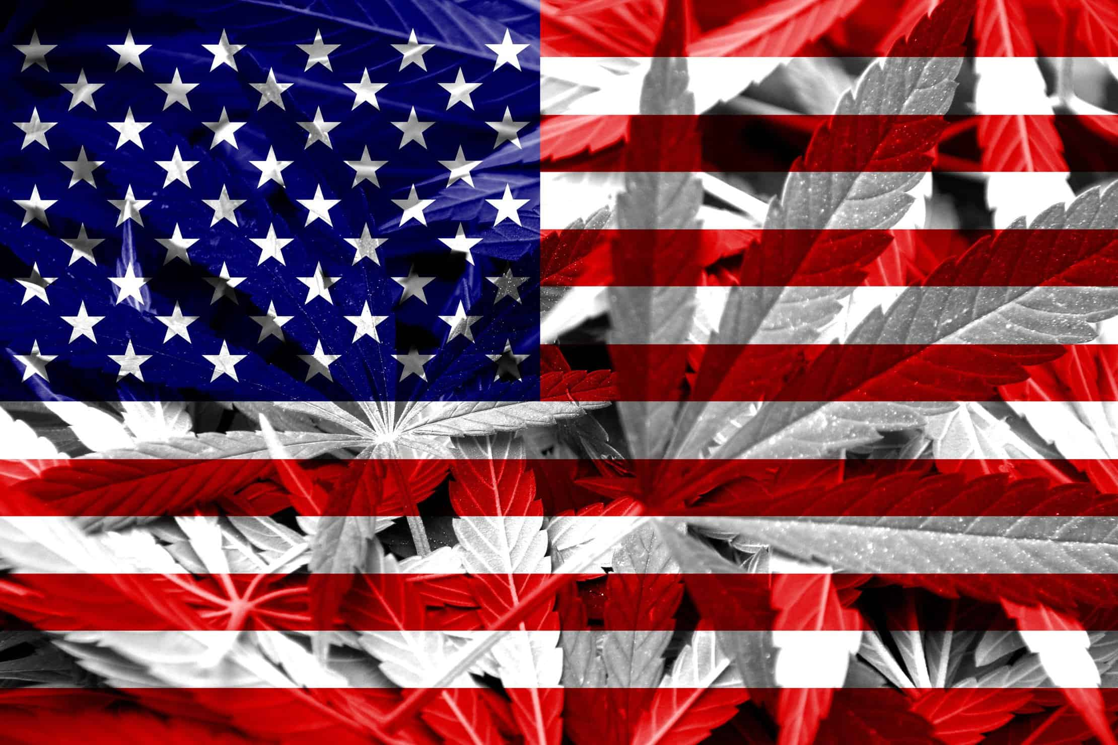 An Argument For Full Marijunana Legalization By 2021 In The USA. US flag with marijuana leaves.