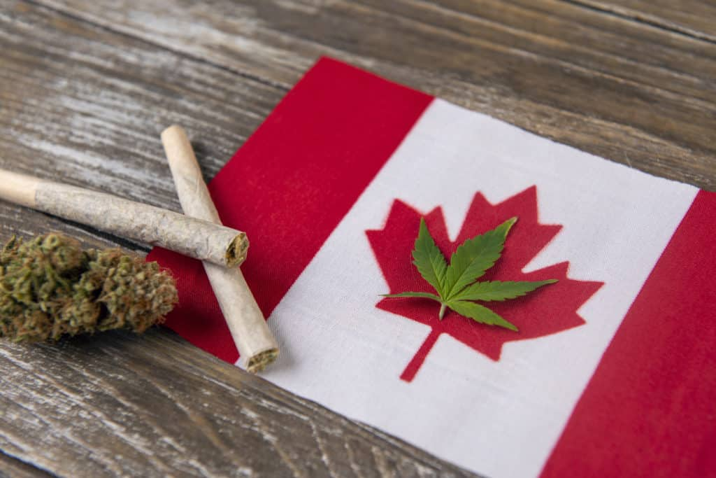 2019 Marijuana Trends In Canada That You Should Watch For