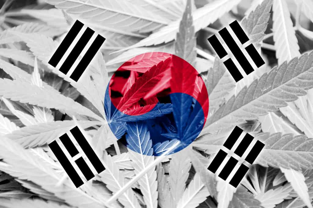 South Korea: The Latest Legal Marijuana Country