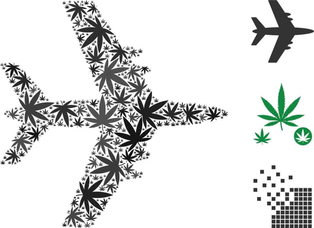 Learn About Marijuana Tourism for Fun and Profit. Airplane made out of marijuana leaves.