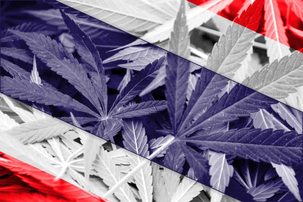 Thailand Becomes the Latest Country to Legalize Cannabis