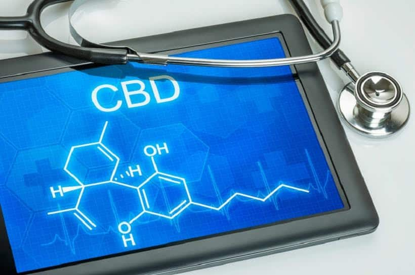 Understanding how CBD Effects The Body. iPad with CBD and chemical compound on screen.