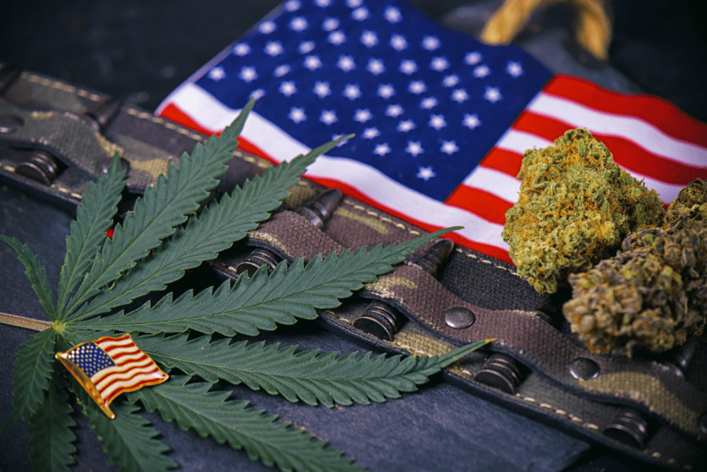 How Cannabis Consumption Can Help Veterans