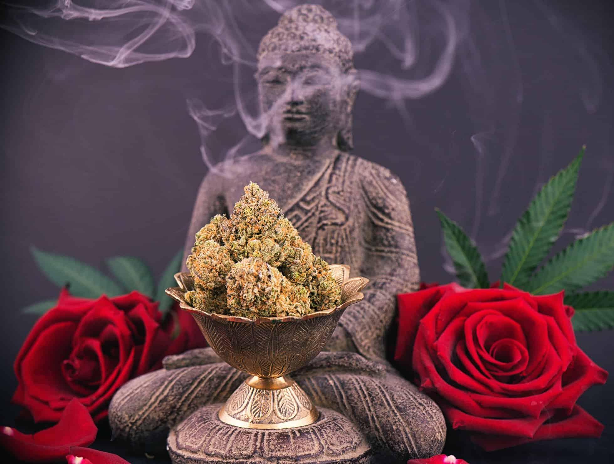 Benefits of Consuming Cannabis While Meditating. Buddha with marijuana and roses.