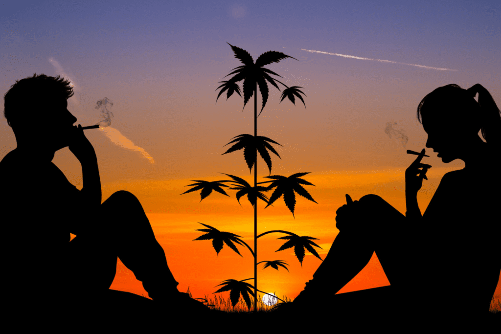 How to Discuss Cannabis Use With A New Partner