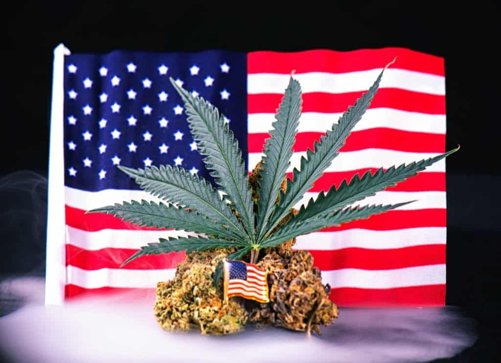 These Two Pieces of Recent Cannabis Legislation Could Be Huge
