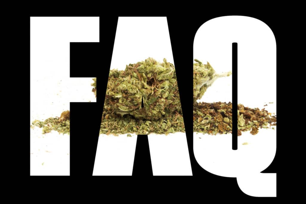 Answers To Most Probing Marijuana Questions. FAQ sign with weed on it.