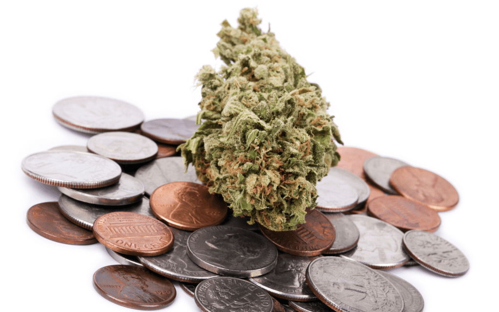 Why You Might Want To Invest in the Marijuana Industry