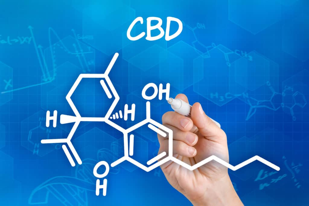 CBD Patches and How They Work