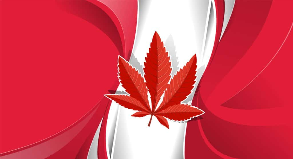 Marijuana Education in Canada. Canadian flag with red marijuana leaf.