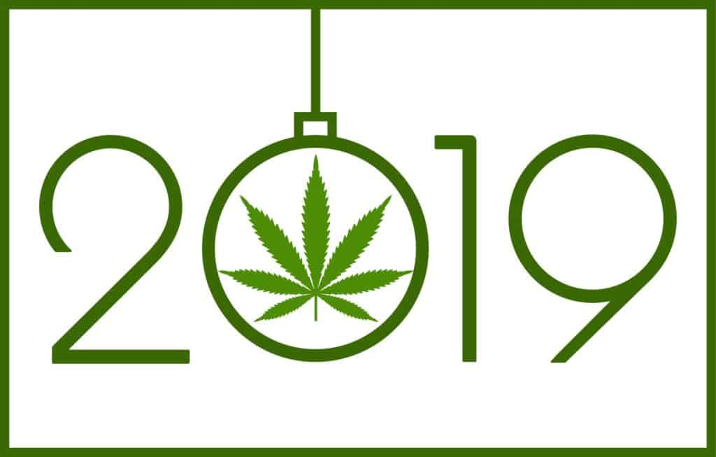 Cannabis Expectations for 2019