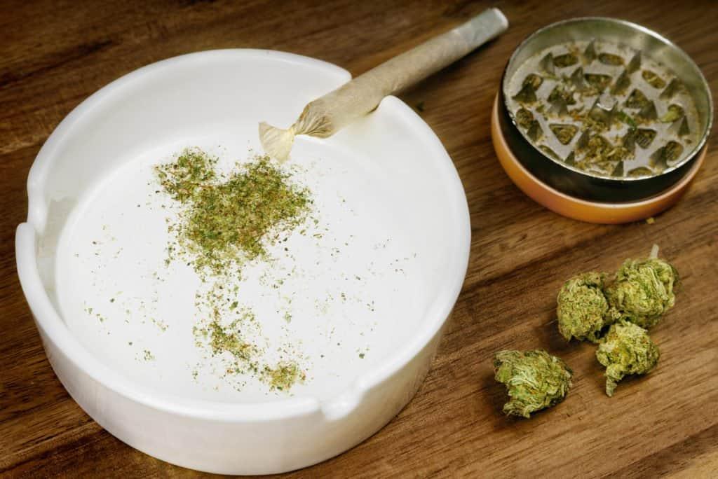 Cannabis Status In Cambodia and Thailand