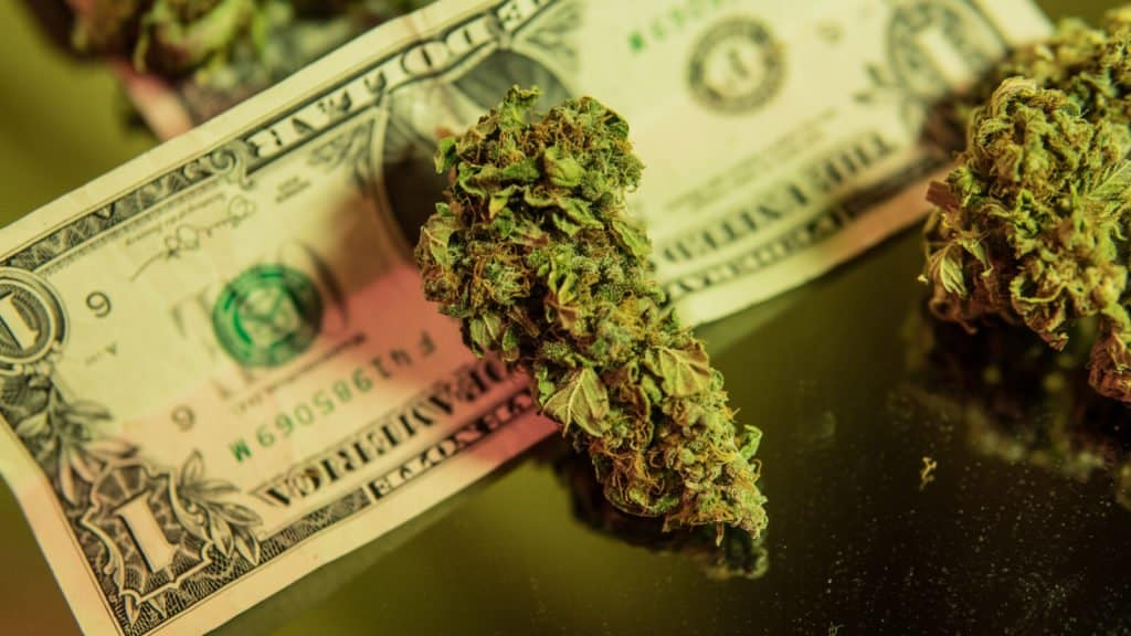 First Credit Union To Offer Services To Cannabis Business Owners