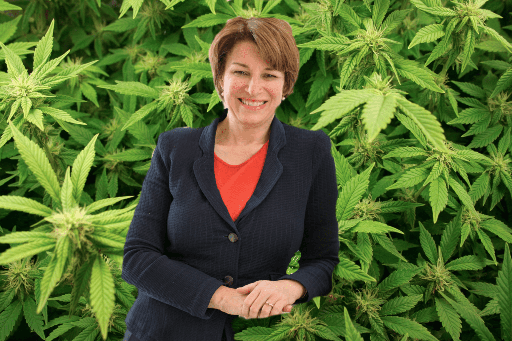 Marijuana Views of Presidential Candidate Amy Klobuchar