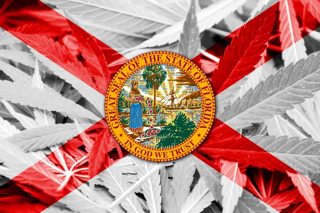 Pending Legislation For Marijuana Bills in Florida