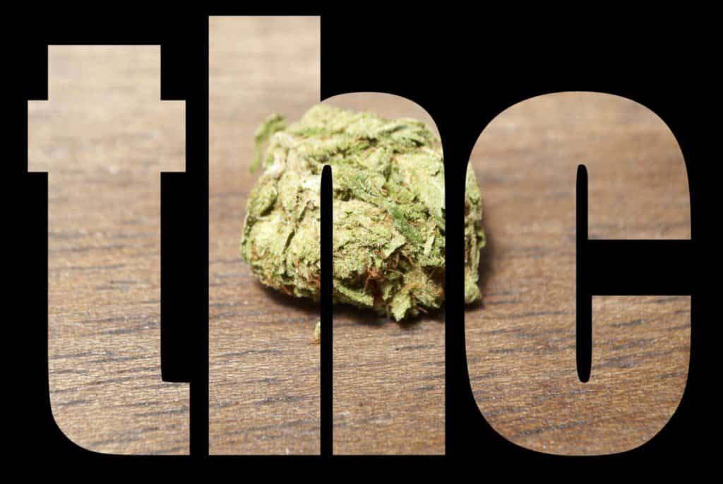 Recent Cannabis Research Shows Importance of THC