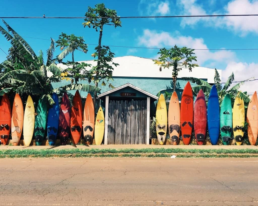 Hawaii surf shop. Hawaii cannabis college.