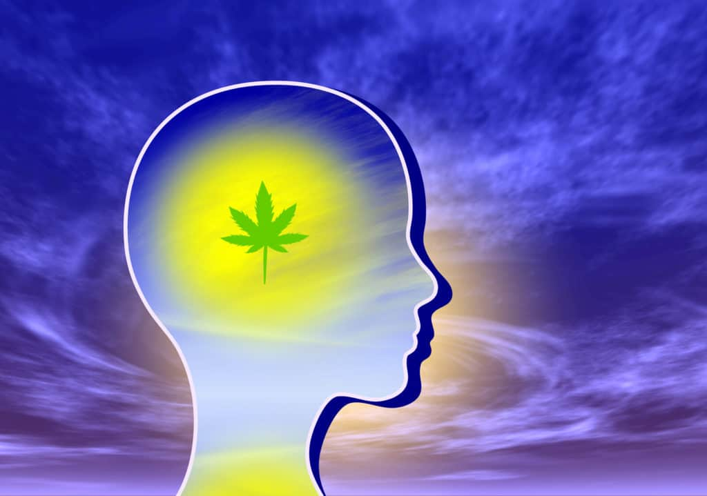 How To Deal With Marijuana Brain Fog