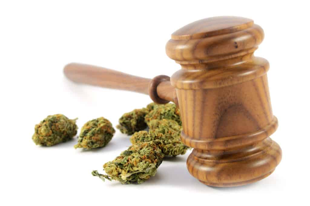 How to Start a Career as a Cannabis Lawyer