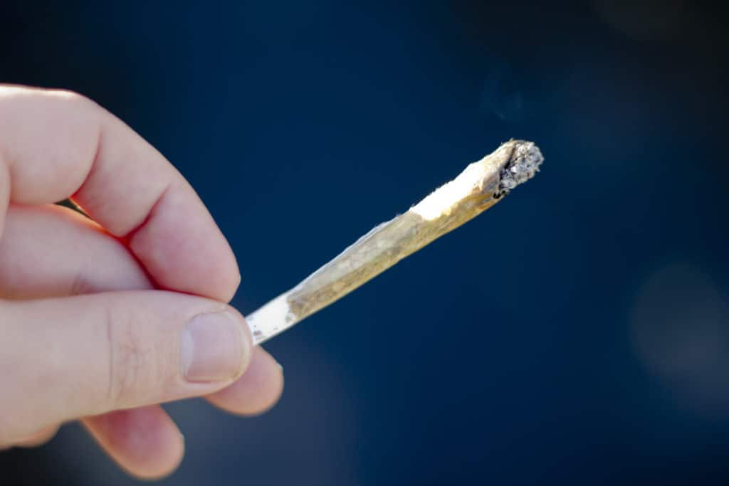 Marijuana Tolerance and What You Should Know