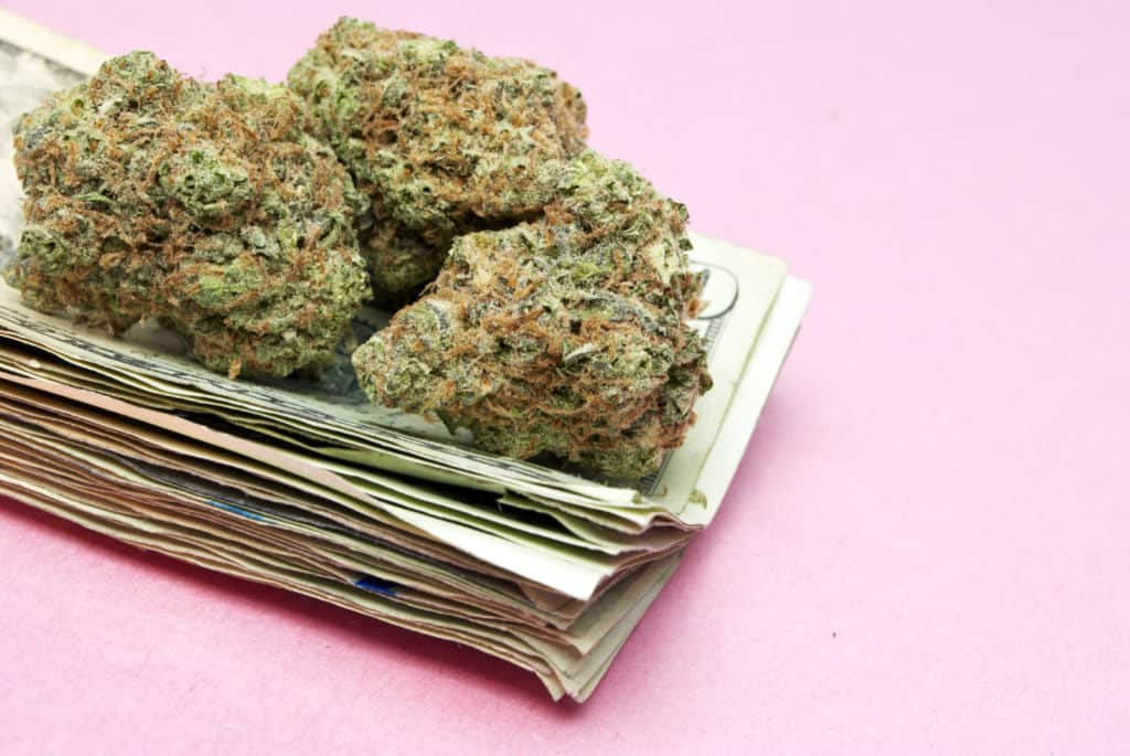 What You Should Know During Your Cannabis Purchase