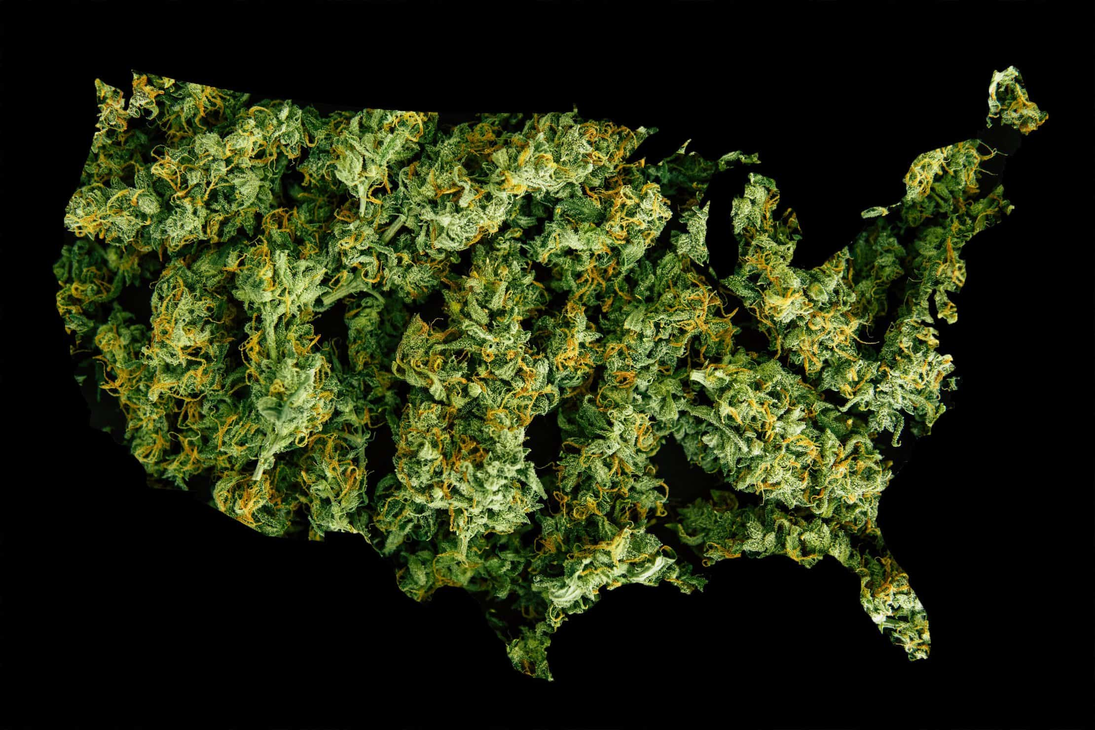 Cannabis Legalization. Legalize marijuana in the United States